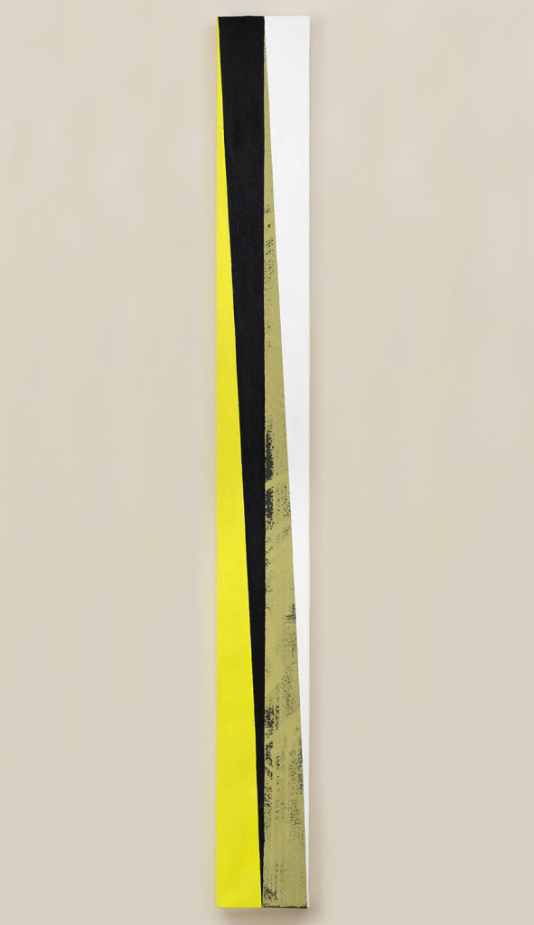 GEO - metry no. 11 / from the Residential Sector series / 260 x 27 cm / mixed media, canvas / 2013