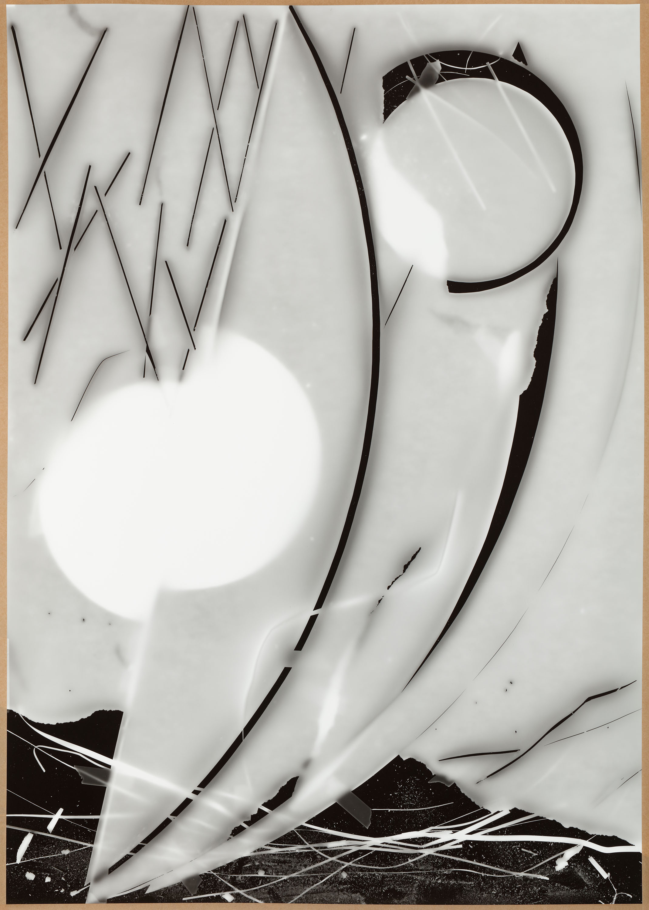 Exposure no.15 : from the DATA series : 155x108cm : photogram, paper : 2018